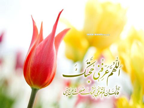 1_mamzaman01